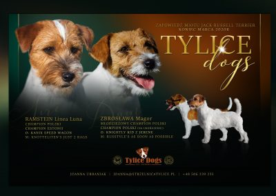 tylicedogs.pl